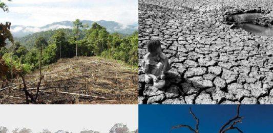 Dañamos al planeta sin darnos cuenta